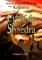 Couverture du Volume 3 du Cycle de Shaedra